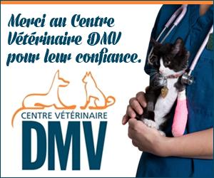 Centre Vétérinaire DMV