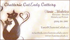 Breeder - Chatterie Catlady