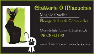 La Chatterie O Minouches