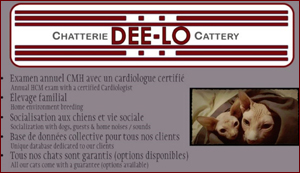Chatterie-Dee-Lo
