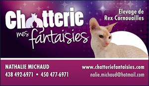 Chatterie Mes Fantaisies