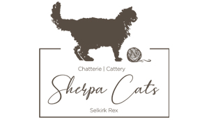 Elevage - Chatterie Sherpacats